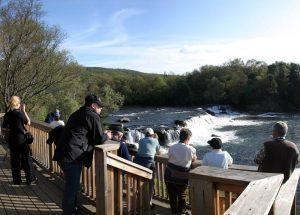Brooks Lodge Falls Bear Viewing Platform
