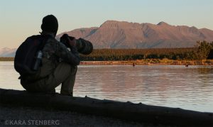 Brooks Lodge Photographing Bears